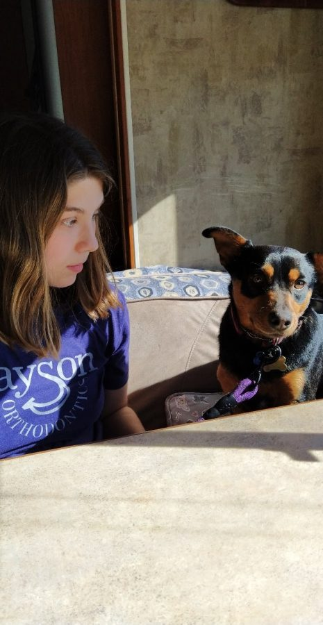 Freshman Addison Gerber converses with her dog, Max, about squirrels