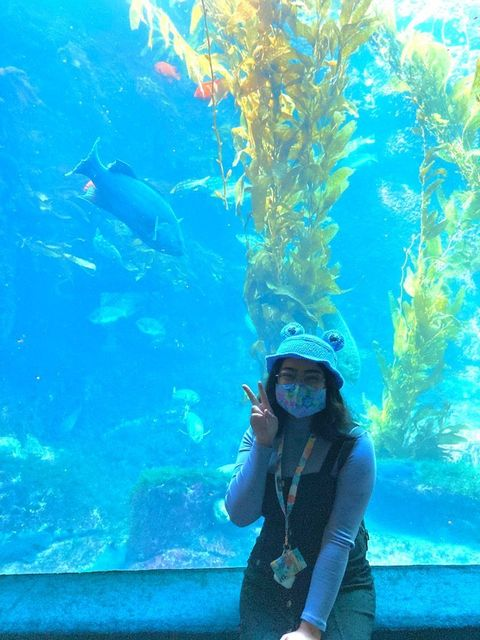 Burroughs+Graduate+Rachel+Rosal+enjoys+spending+time+at+UCSD%27s+aquarium.+